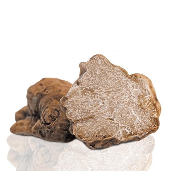 White Truffle - Tuber Magnatum Pico